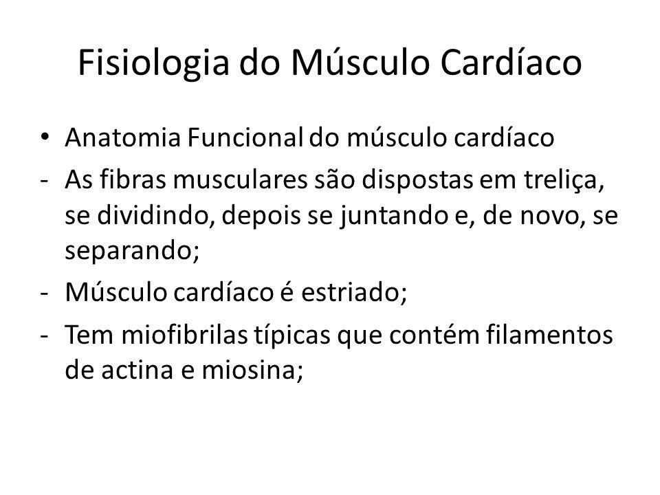 • Anatomia Funcional do músculo cardíaco -As fibras musculares são dispostas em treliça, se dividindo, depois se juntando e, de novo, se separando; -M