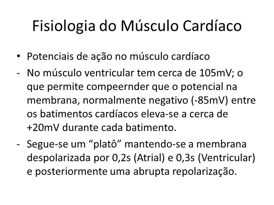 • Potenciais de ação no músculo cardíaco -No músculo ventricular tem cerca de 105mV; o que permite compeernder que o potencial na membrana, normalment