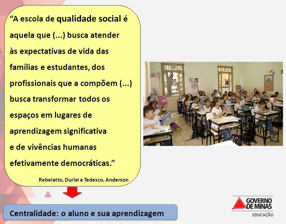 """""""A escola de qualidade social é aquela que (...) busca atender às expectativas de vida das famílias e estudantes, dos profissionais que a compõem (..."""