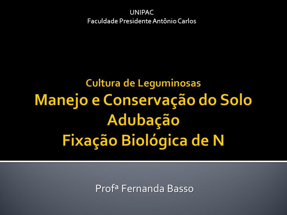 Profª Fernanda Basso UNIPAC Faculdade Presidente Antônio Carlos