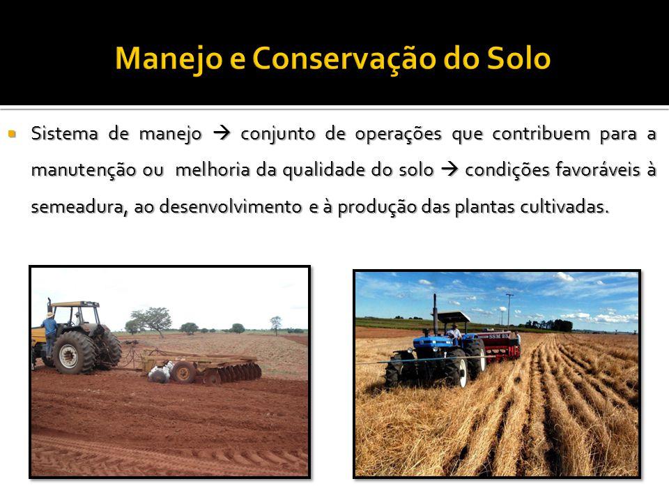  Sistema de manejo  conjunto de operações que contribuem para a manutenção ou melhoria da qualidade do solo  condições favoráveis à semeadura, ao d