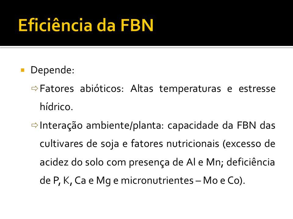  Depende:  Fatores abióticos: Altas temperaturas e estresse hídrico.  Interação ambiente/planta: capacidade da FBN das cultivares de soja e fatores
