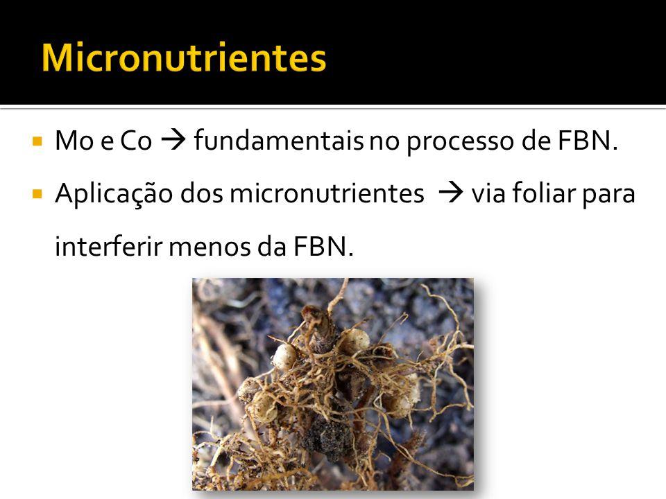  Mo e Co  fundamentais no processo de FBN.  Aplicação dos micronutrientes  via foliar para interferir menos da FBN.