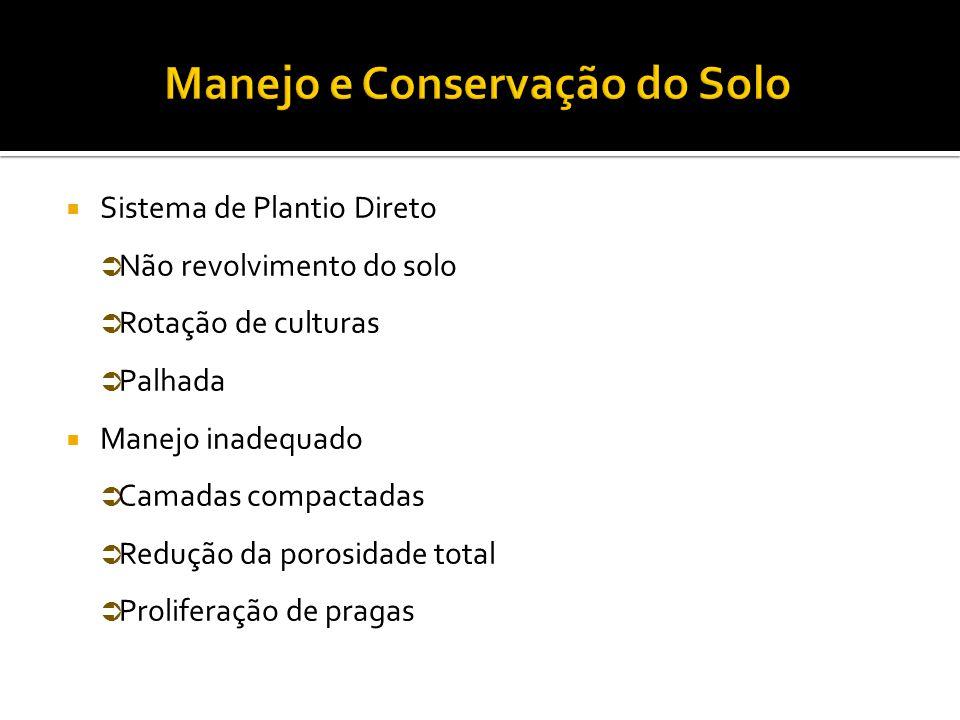  Possibilita a renovação qualitativa da população de rizóbios no solo.