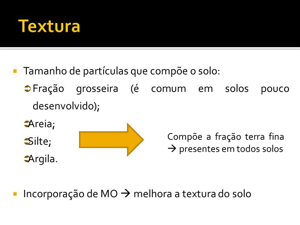  Tamanho de partículas que compõe o solo:  Fração grosseira (é comum em solos pouco desenvolvido);  Areia;  Silte;  Argila.  Incorporação de MO