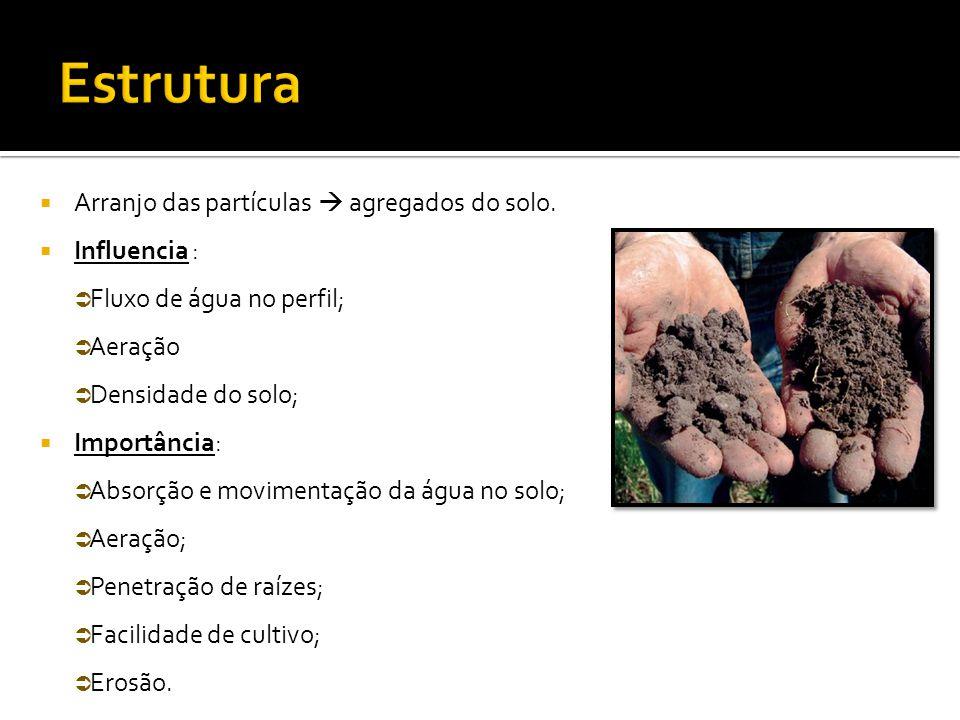  Arranjo das partículas  agregados do solo.  Influencia :  Fluxo de água no perfil;  Aeração  Densidade do solo;  Importância:  Absorção e mov