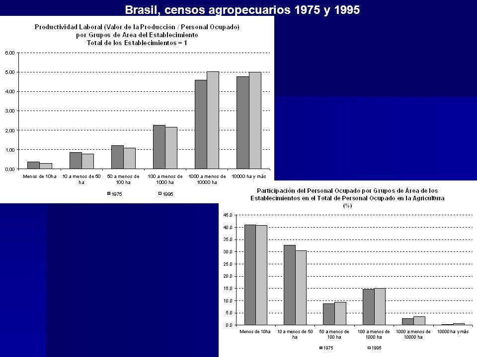 Brasil, censos agropecuarios 1975 y 1995