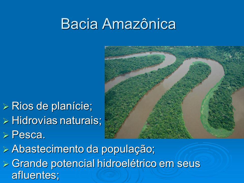 Bacia Amazônica  Rios de planície;  Hidrovias naturais;  Pesca.  Abastecimento da população;  Grande potencial hidroelétrico em seus afluentes;
