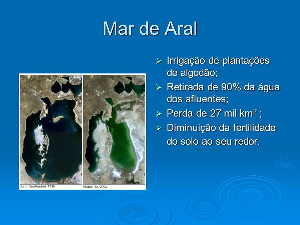 Mar de Aral  Irrigação de plantações de algodão;  Retirada de 90% da água dos afluentes;  Perda de 27 mil km 2 ;  Diminuição da fertilidade do solo ao seu redor.