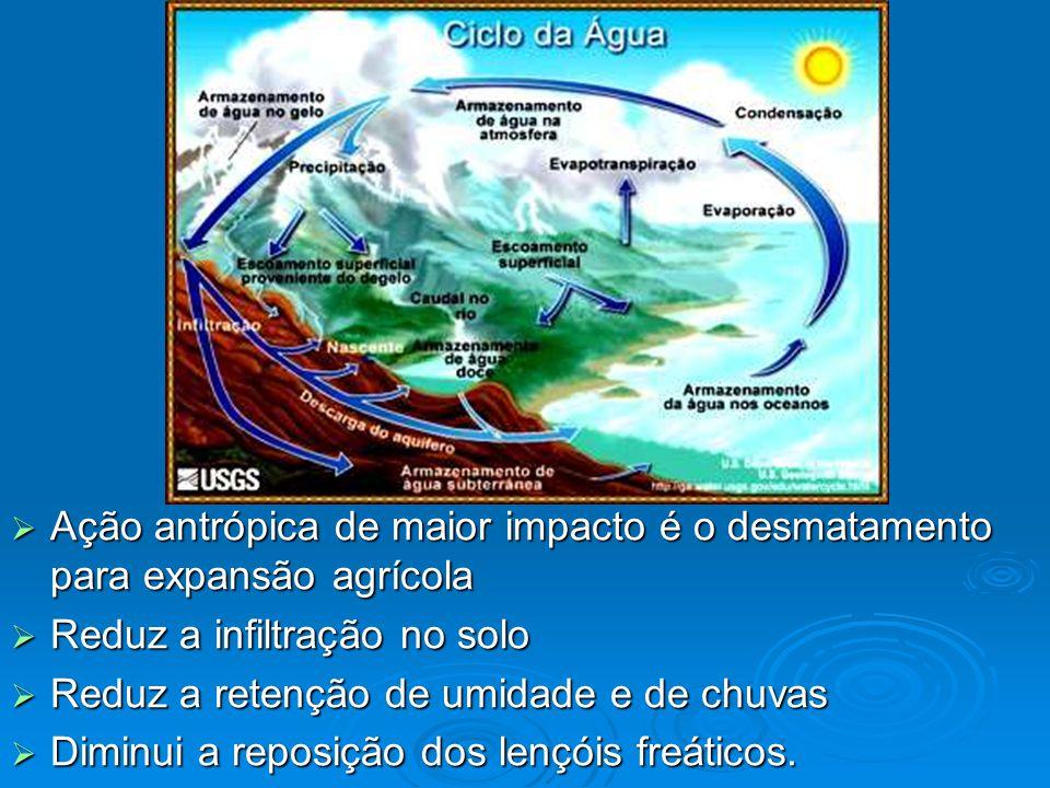  Ação antrópica de maior impacto é o desmatamento para expansão agrícola  Reduz a infiltração no solo  Reduz a retenção de umidade e de chuvas  Diminui a reposição dos lençóis freáticos.