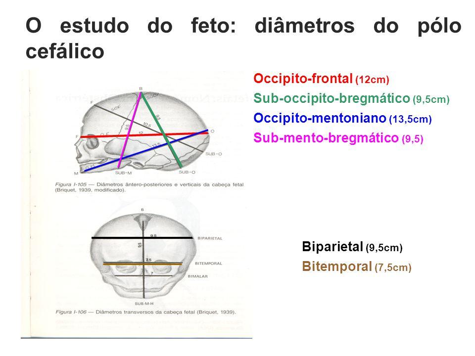 O estudo do feto: diâmetros do pólo cefálico Occipito-frontal (12cm) Sub-occipito-bregmático (9,5cm) Occipito-mentoniano (13,5cm) Sub-mento-bregmático