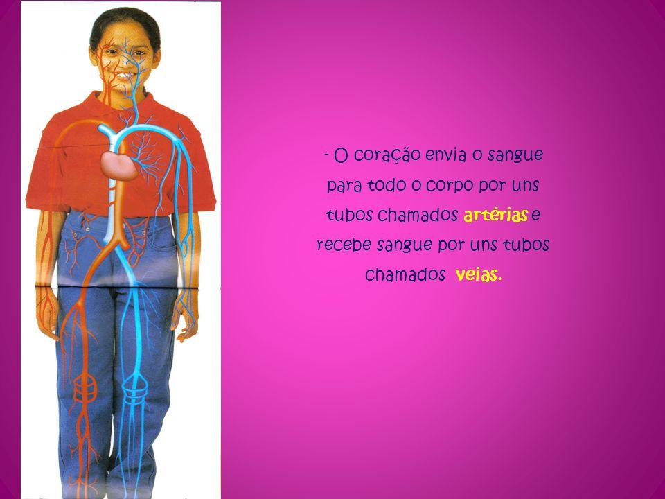 - O coração envia o sangue para todo o corpo por uns tubos chamados artérias e recebe sangue por uns tubos chamados veias.