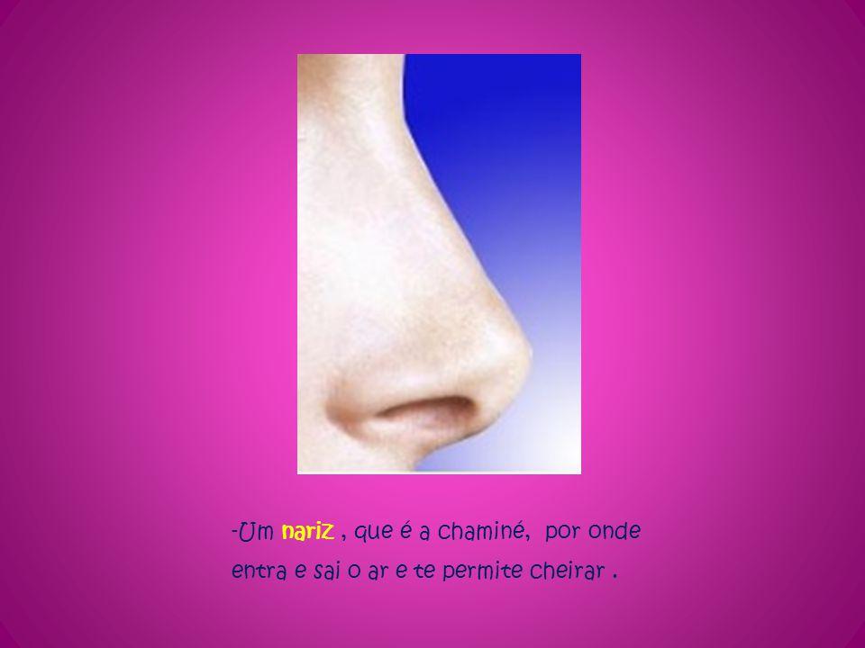 -Um nariz, que é a chaminé, por onde entra e sai o ar e te permite cheirar.