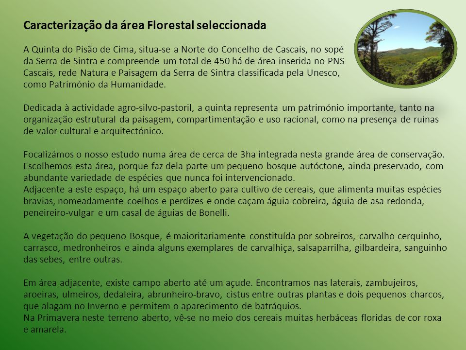 Caracterização da área Florestal seleccionada A Quinta do Pisão de Cima, situa-se a Norte do Concelho de Cascais, no sopé da Serra de Sintra e compree
