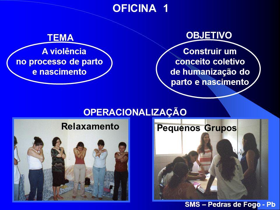 A violência no processo de parto e nascimento Construir um conceito coletivo de humanização do parto e nascimento SMS – Pedras de Fogo - Pb OBJETIVO T