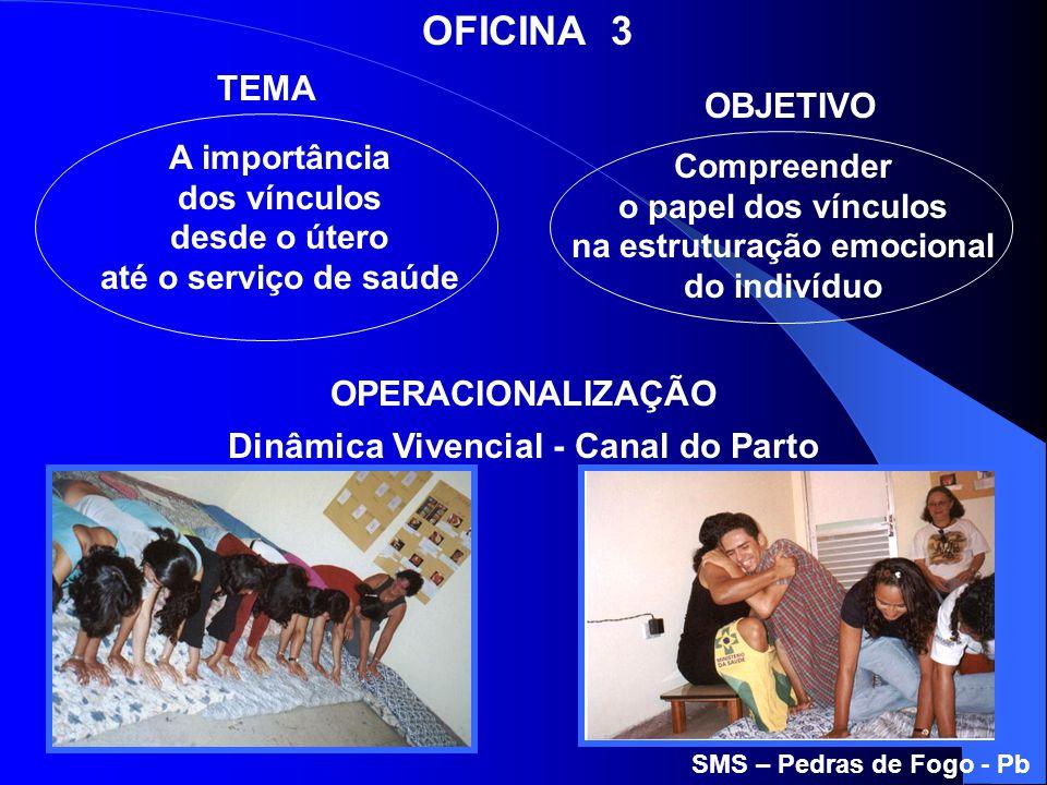 A importância dos vínculos desde o útero até o serviço de saúde Compreender o papel dos vínculos na estruturação emocional do indivíduo OFICINA 3 TEMA
