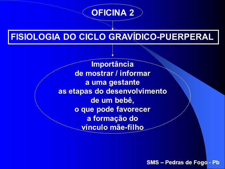 OFICINA 2 Importância de mostrar / informar a uma gestante as etapas do desenvolvimento de um bebê, o que pode favorecer a formação do vínculo mãe-fil