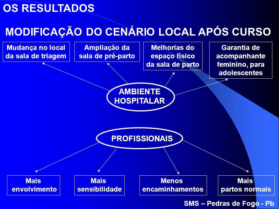 MODIFICAÇÃO DO CENÁRIO LOCAL APÓS CURSO AMBIENTE HOSPITALAR PROFISSIONAIS Mudança no local da sala de triagem Ampliação da sala de pré-parto Melhorias
