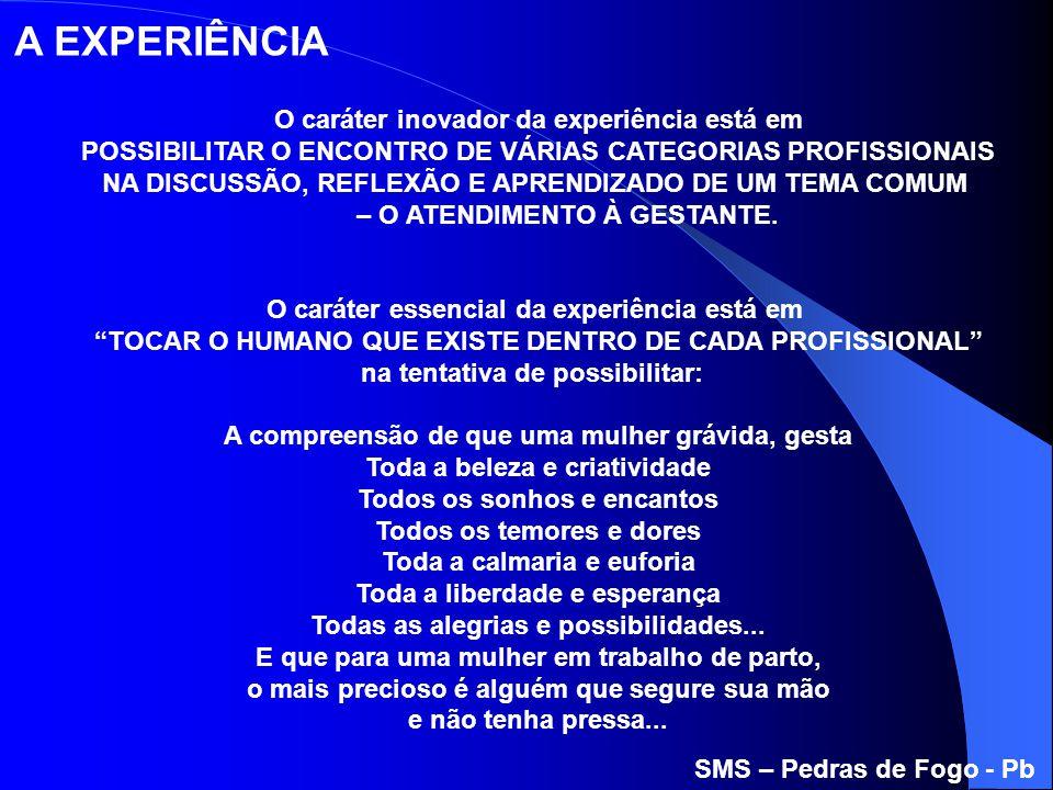 O caráter inovador da experiência está em POSSIBILITAR O ENCONTRO DE VÁRIAS CATEGORIAS PROFISSIONAIS NA DISCUSSÃO, REFLEXÃO E APRENDIZADO DE UM TEMA C