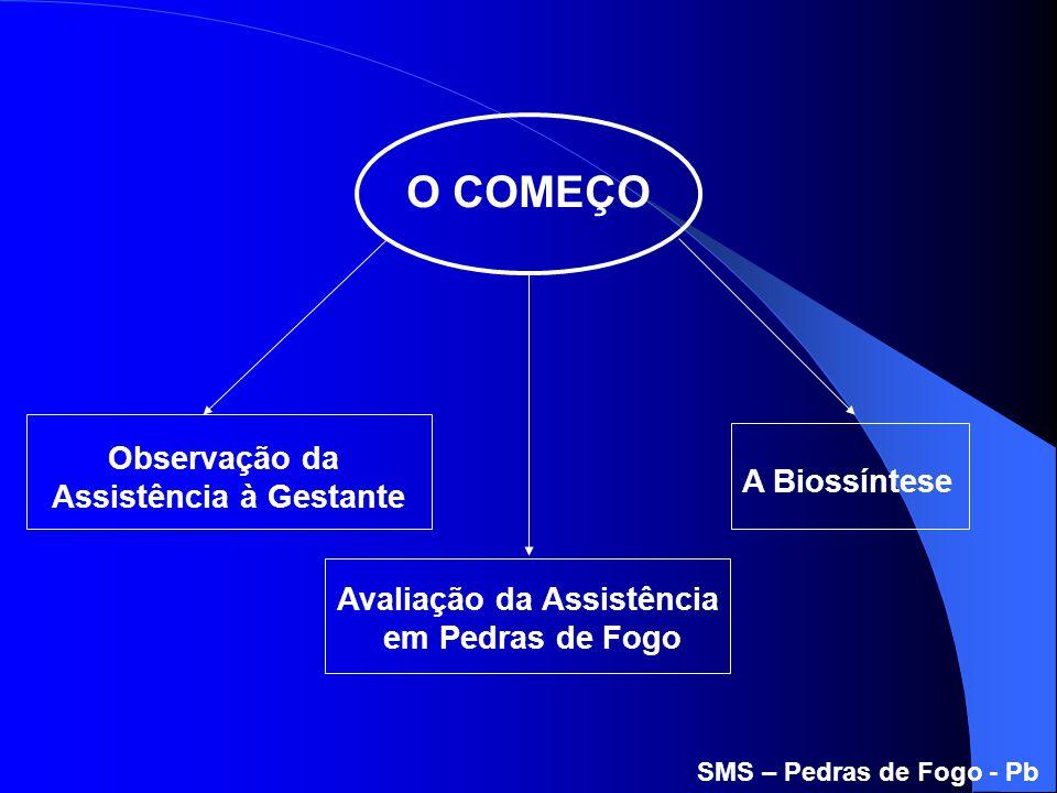 A Biossíntese O COMEÇO Avaliação da Assistência em Pedras de Fogo Observação da Assistência à Gestante SMS – Pedras de Fogo - Pb