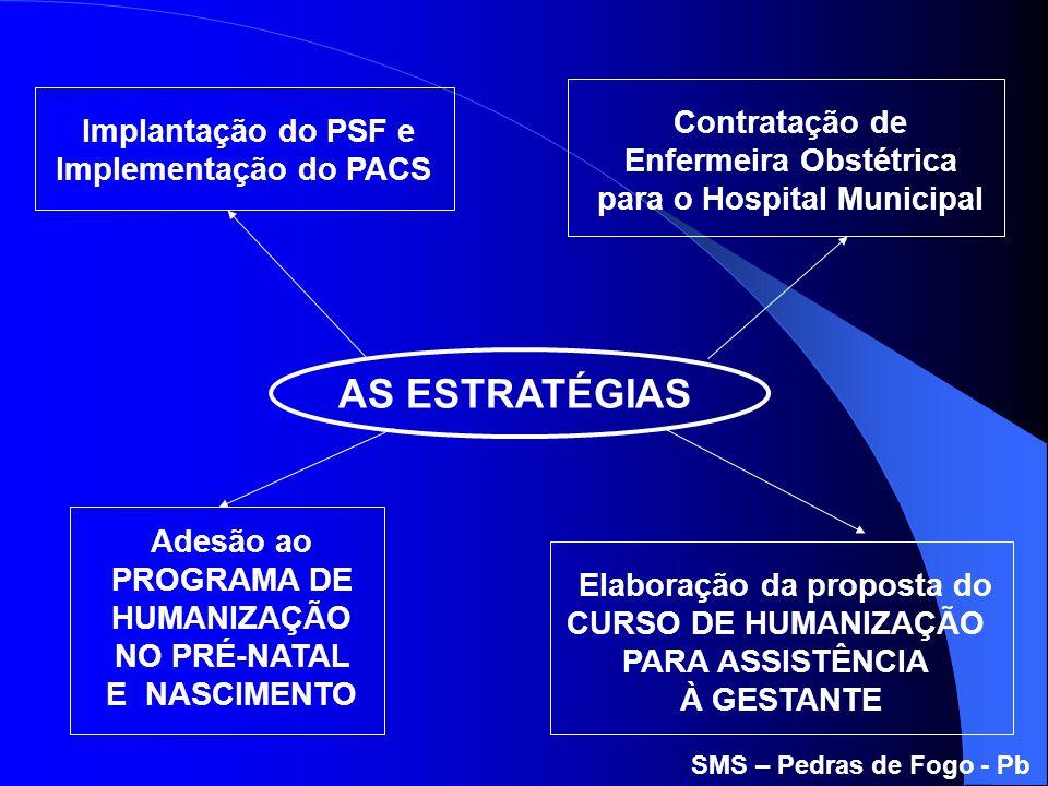 Elaboração da proposta do CURSO DE HUMANIZAÇÃO PARA ASSISTÊNCIA À GESTANTE AS ESTRATÉGIAS Contratação de Enfermeira Obstétrica para o Hospital Municip