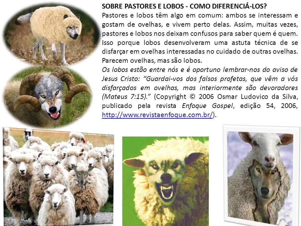 SOBRE PASTORES E LOBOS - COMO DIFERENCIÁ-LOS? Pastores e lobos têm algo em comum: ambos se interessam e gostam de ovelhas, e vivem perto delas. Assim,
