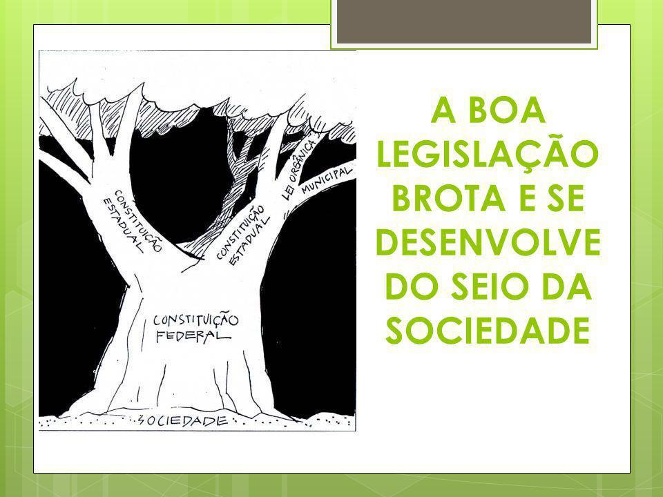 POLÍTICA NACIONAL DE MEIO AMBIENTE (PNMA)  O mais importante diploma legal brasileiro na área ambiental é sem dúvida a Lei n° 6.938/81 com regulamentação no Decreto n° 99.274/90.