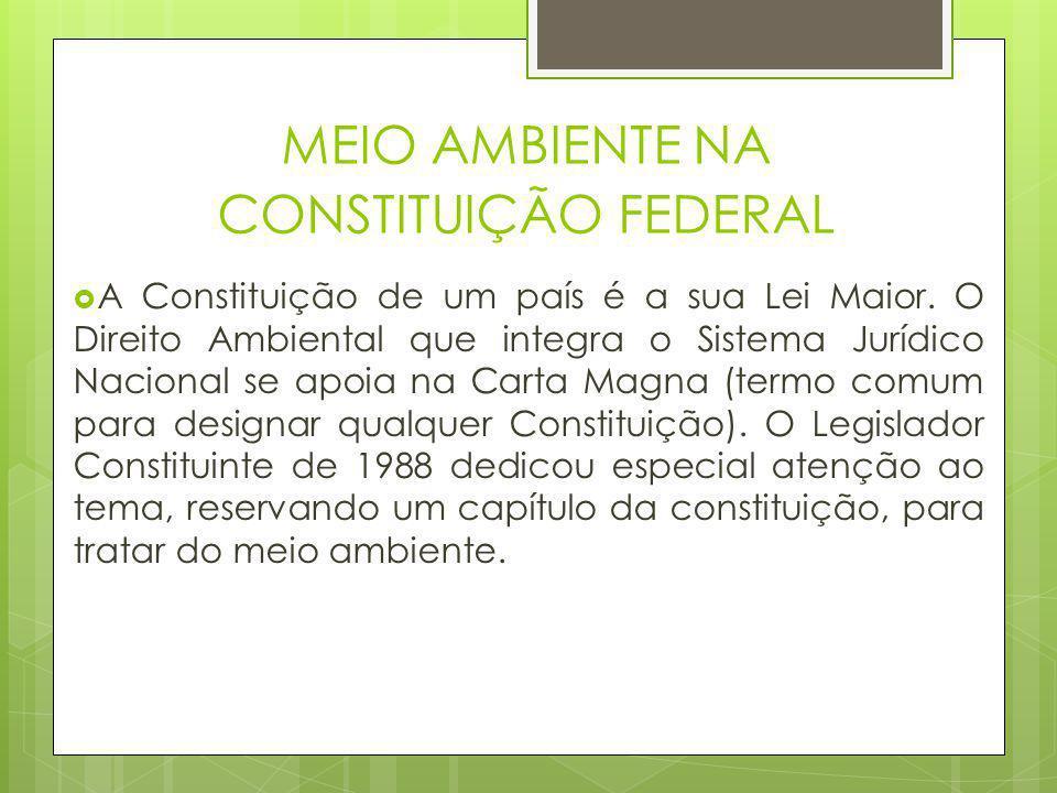  A Constituição de um país é a sua Lei Maior. O Direito Ambiental que integra o Sistema Jurídico Nacional se apoia na Carta Magna (termo comum para d