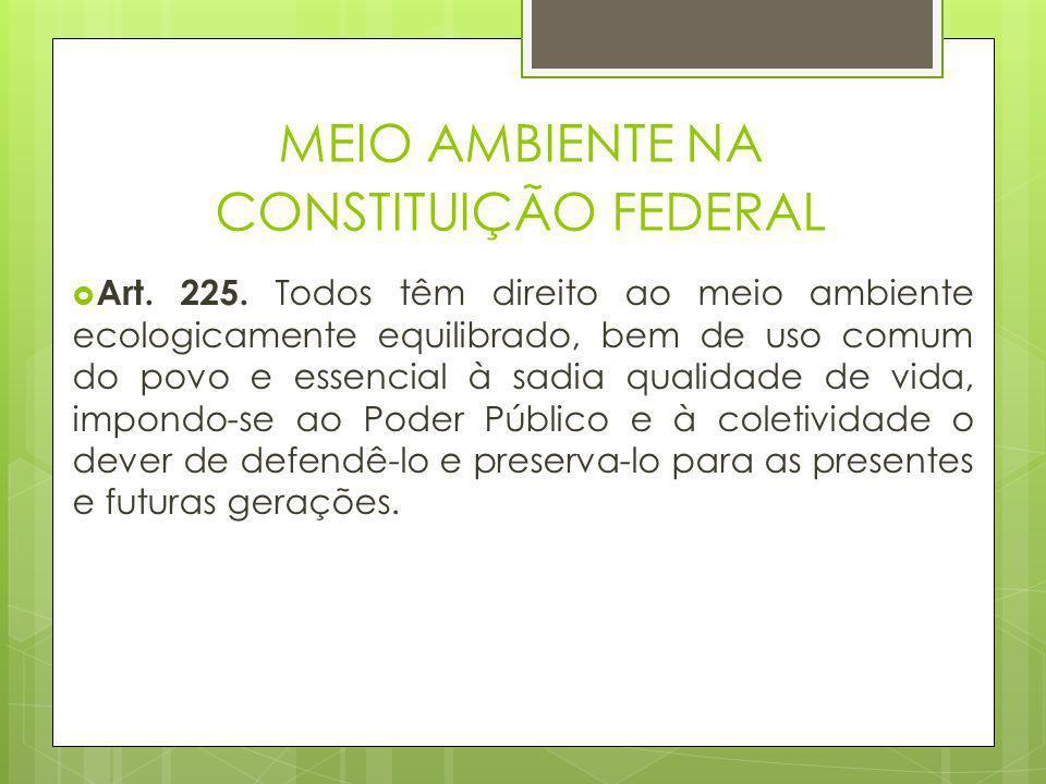 Lei nº 9.605, de 12 de fevereiro de 1998 – lei de crimes ambientais  Art.