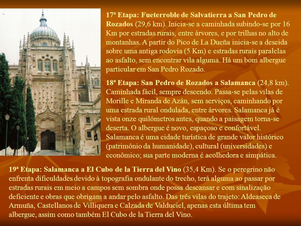 17ª Etapa: Fueterroble de Salvatierra a San Pedro de Rozados (29,6 km).