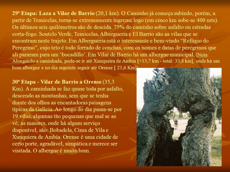 29ª Etapa: Laza a Vilar de Barrio (20,1 km).
