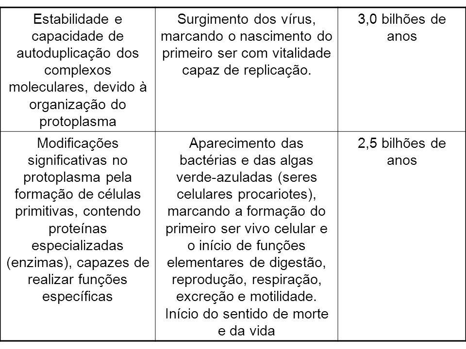 Estabilidade e capacidade de autoduplicação dos complexos moleculares, devido à organização do protoplasma Surgimento dos vírus, marcando o nascimento