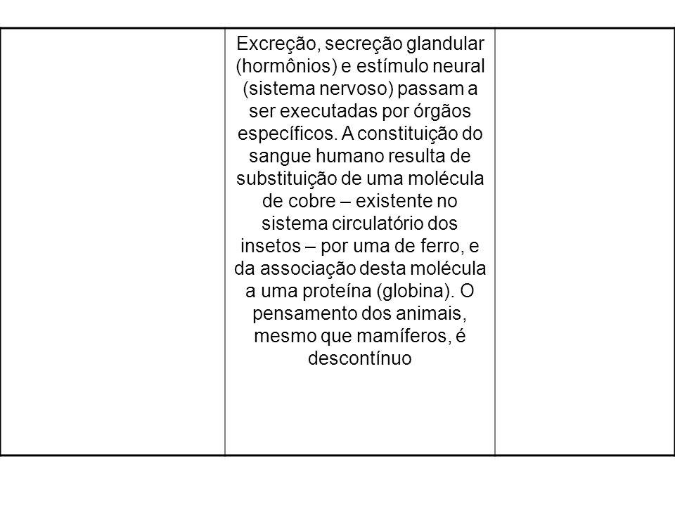 Excreção, secreção glandular (hormônios) e estímulo neural (sistema nervoso) passam a ser executadas por órgãos específicos. A constituição do sangue