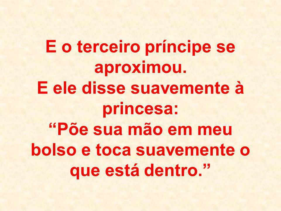 """E o terceiro príncipe se aproximou. E ele disse suavemente à princesa: """"Põe sua mão em meu bolso e toca suavemente o que está dentro."""""""
