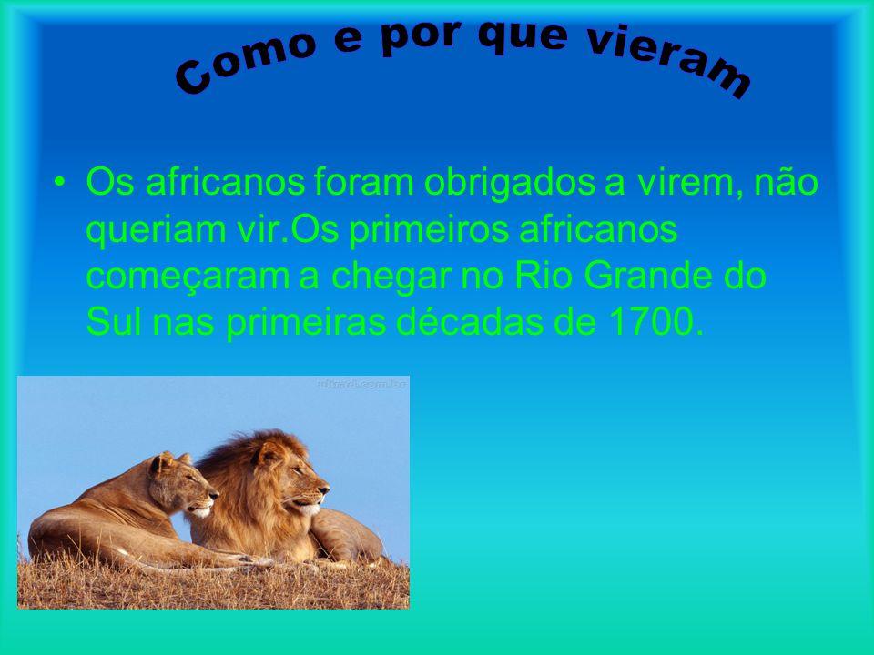•C•Calcula-se que por volta de 1860 havia 80mil africanos espalhados pelo território gaúcho,especialmente nas regiões de Jaguarão,Pelotas,Canguçu e Piratini e de São José do Norte,Viamão,Triunfo e Taquari.