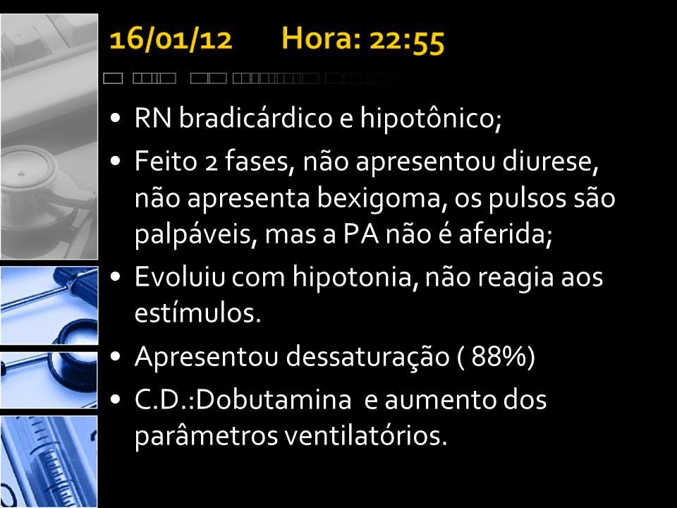 •RN bradicárdico e hipotônico; •Feito 2 fases, não apresentou diurese, não apresenta bexigoma, os pulsos são palpáveis, mas a PA não é aferida; •Evoluiu com hipotonia, não reagia aos estímulos.