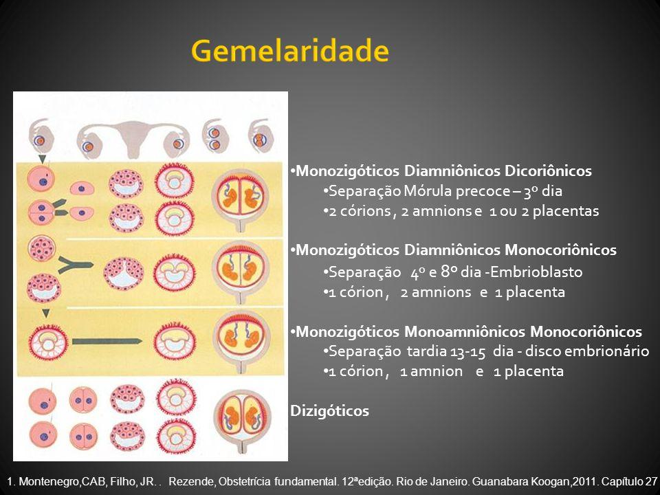 • Monozigóticos Diamniônicos Dicoriônicos • Separação Mórula precoce – 3º dia • 2 córions, 2 amnions e 1 ou 2 placentas • Monozigóticos Diamniônicos Monocoriônicos • Separação 4º e 8º dia -Embrioblasto • 1 córion, 2 amnions e 1 placenta • Monozigóticos Monoamniônicos Monocoriônicos • Separação tardia 13-15 dia - disco embrionário • 1 córion, 1 amnion e 1 placenta Dizigóticos 1.