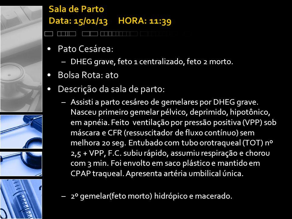 •Pato Cesárea: –DHEG grave, feto 1 centralizado, feto 2 morto.