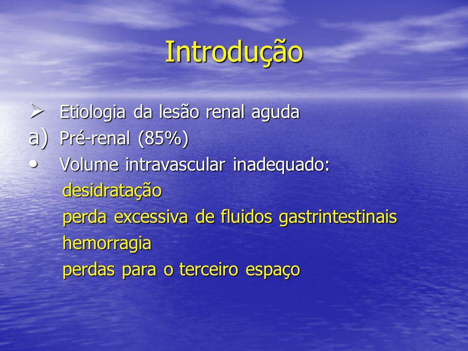 Introdução  Etiologia da lesão renal aguda a) Pré-renal (85%) • Volume intravascular inadequado: desidratação desidratação perda excessiva de fluidos