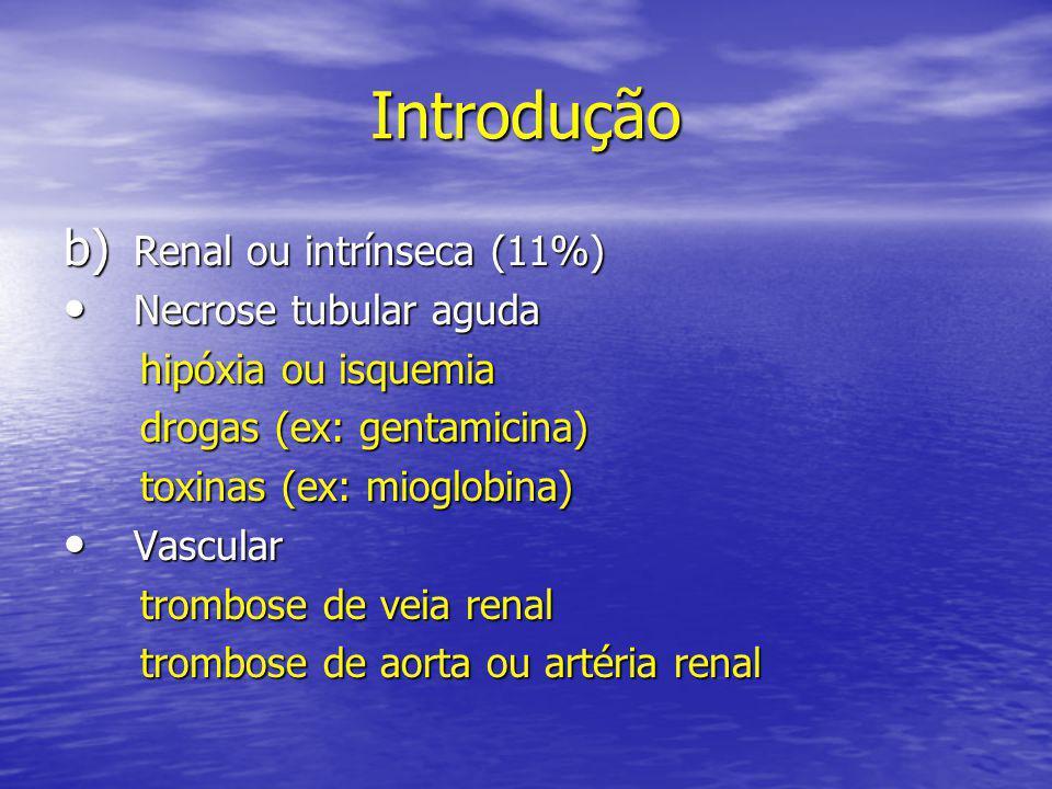 Introdução • Alterações congênitas do parênquima doença renal multicística doença renal multicística doença renal policística doença renal policística c) Pós-renal (3%) • Obstrução renal bilateral bilateral obstrução ureteral bilateral obstrução ureteral bilateral alterações da bexiga (ex:bexiga neurogênica) alterações da bexiga (ex:bexiga neurogênica) obstrução ureteral (válvula uretral posterior) obstrução ureteral (válvula uretral posterior)