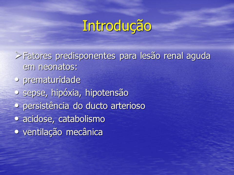 Introdução  Fatores predisponentes para lesão renal aguda em neonatos: • prematuridade • sepse, hipóxia, hipotensão • persistência do ducto arterioso