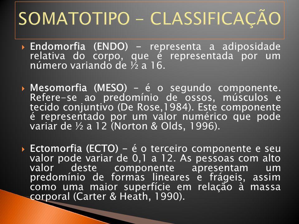 SOMATOTIPO - CLASSIFICAÇÃO  Endomorfia (ENDO) - representa a adiposidade relativa do corpo, que é representada por um número variando de ½ a 16.  Me