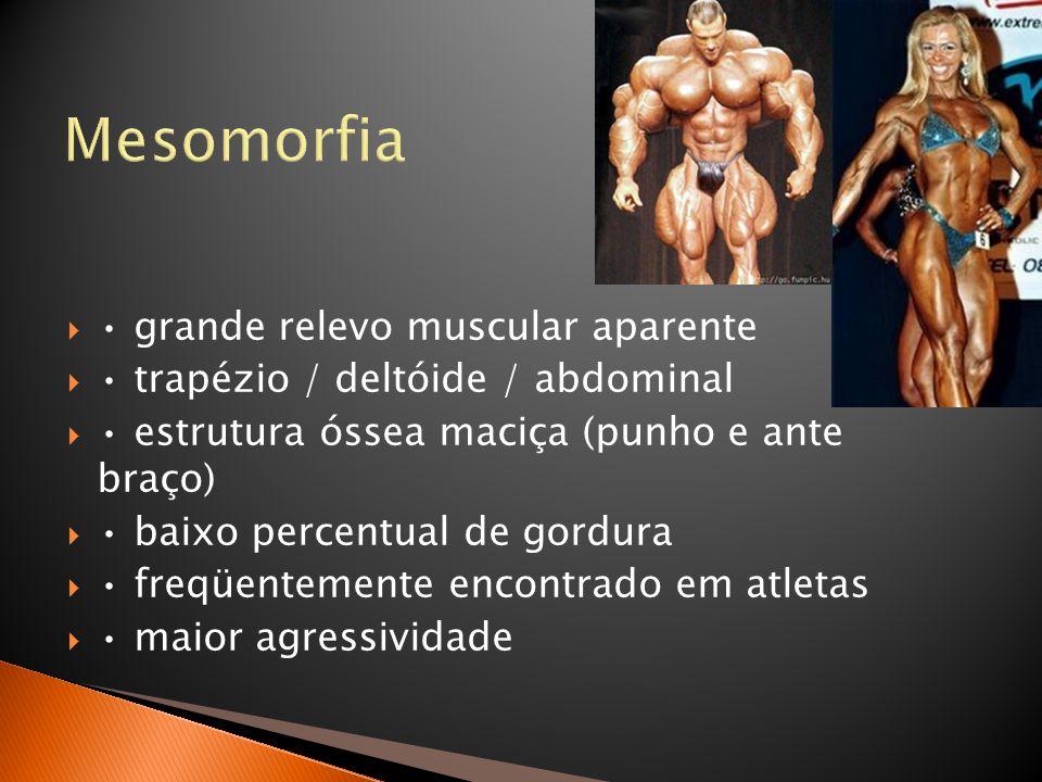 Mesomorfia  • grande relevo muscular aparente  • trapézio / deltóide / abdominal  • estrutura óssea maciça (punho e ante braço)  • baixo percentua