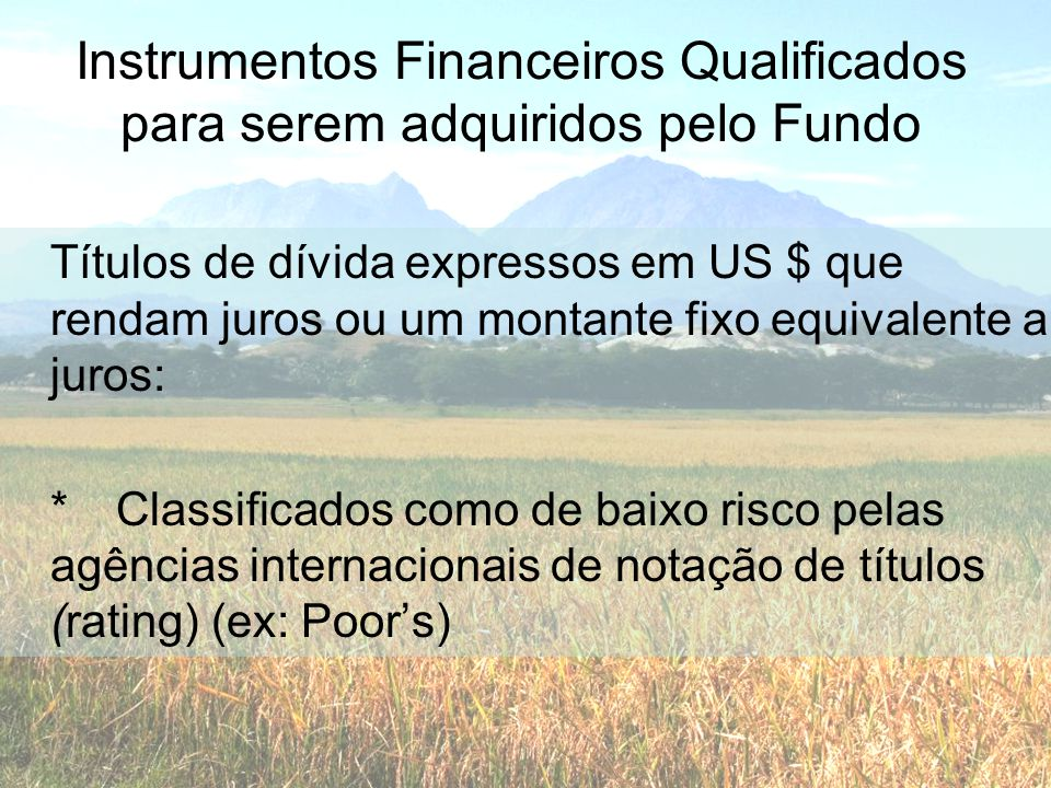 Instrumentos Financeiros Qualificados para serem adquiridos pelo Fundo Títulos de dívida expressos em US $ que rendam juros ou um montante fixo equiva