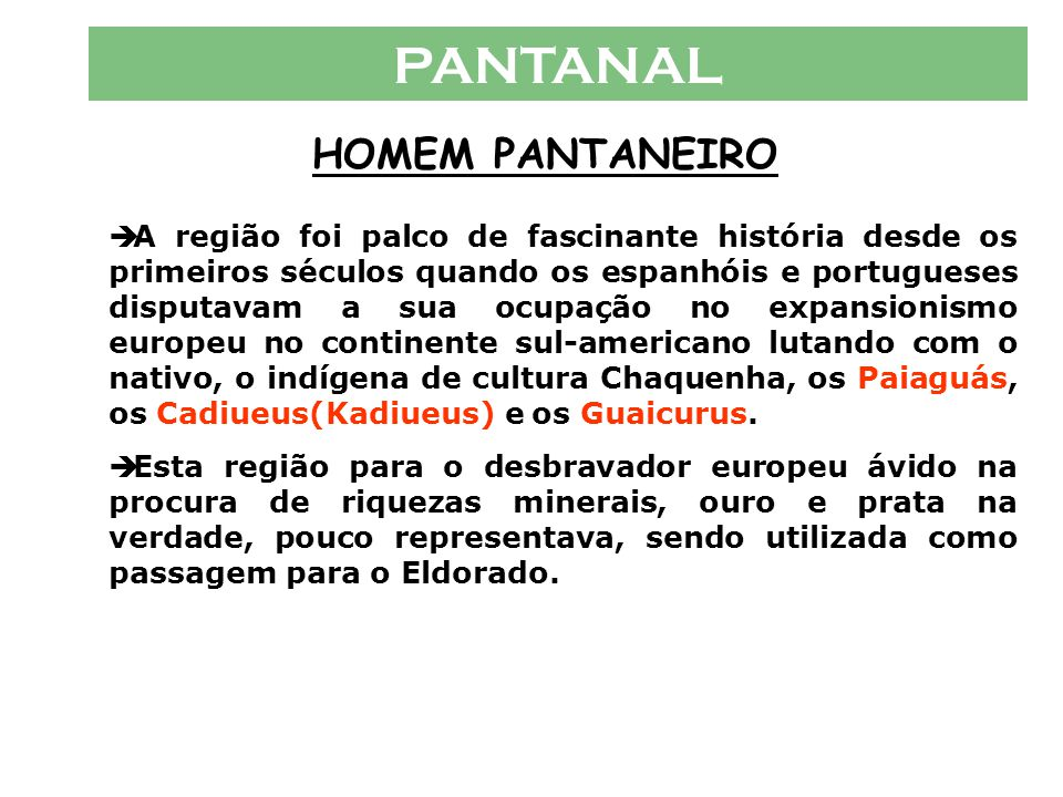 PANTANAL VÁRIOS PANTANAIS  Micro-Regiões Pantanal do Paraguai : Essa região corresponde, em sua maior parte, à extensa plan í cie de inunda ç ão do R