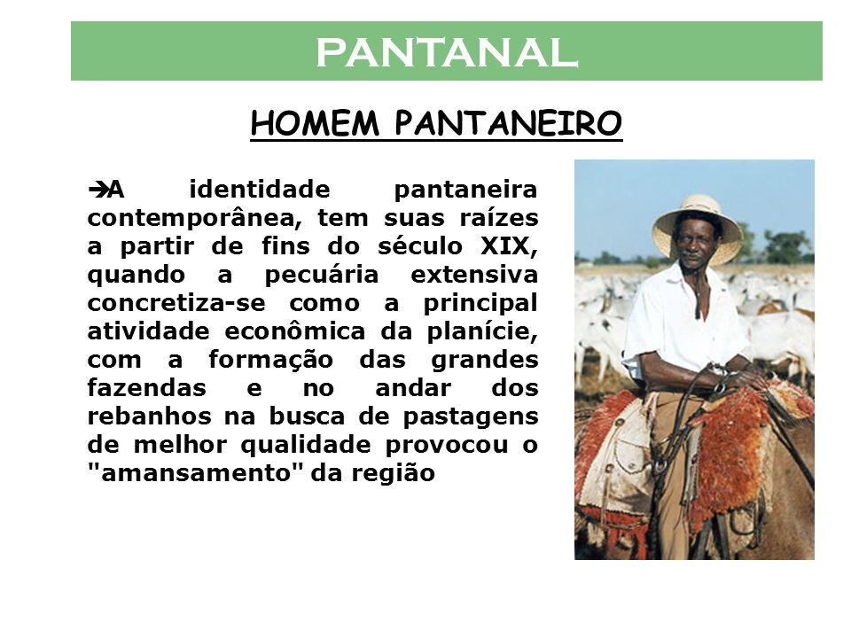 PANTANAL HOMEM PANTANEIRO  A região foi palco de fascinante história desde os primeiros séculos quando os espanhóis e portugueses disputavam a sua oc