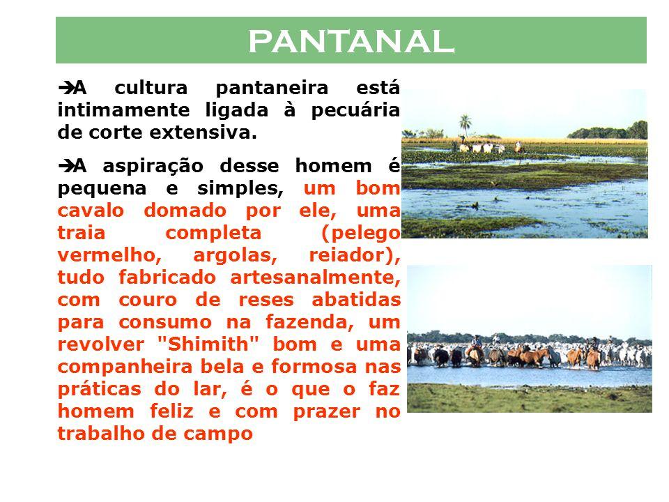 PANTANAL HOMEM PANTANEIRO  A identidade pantaneira contemporânea, tem suas raízes a partir de fins do século XIX, quando a pecuária extensiva concret