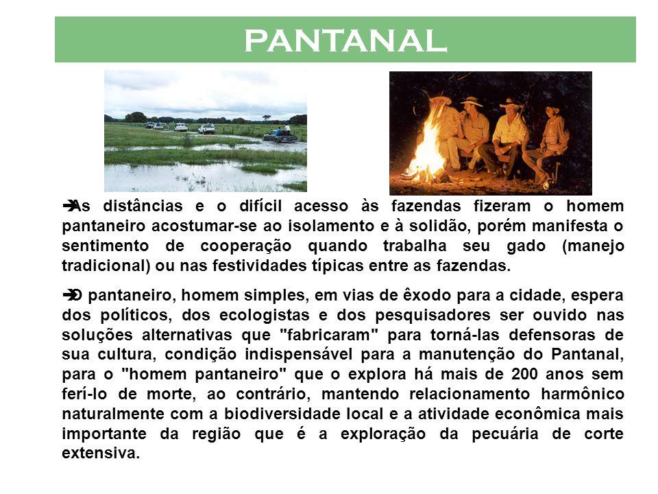 PANTANAL  A cultura pantaneira está intimamente ligada à pecuária de corte extensiva.  A aspiração desse homem é pequena e simples, um bom cavalo do