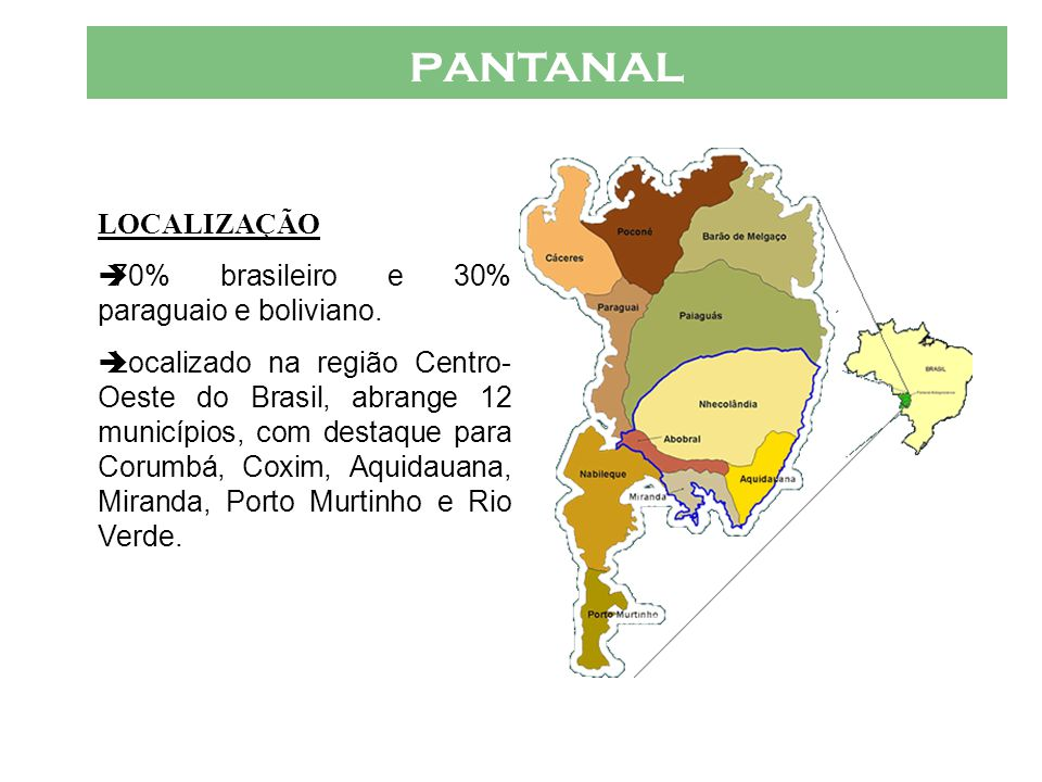 PANTANAL VÁRIOS PANTANAIS  Micro-Regiões Pantanal de Nabileque : Est á sob a jurisdi ç ão de Corumb á, sendo um distrito do munic í pio.