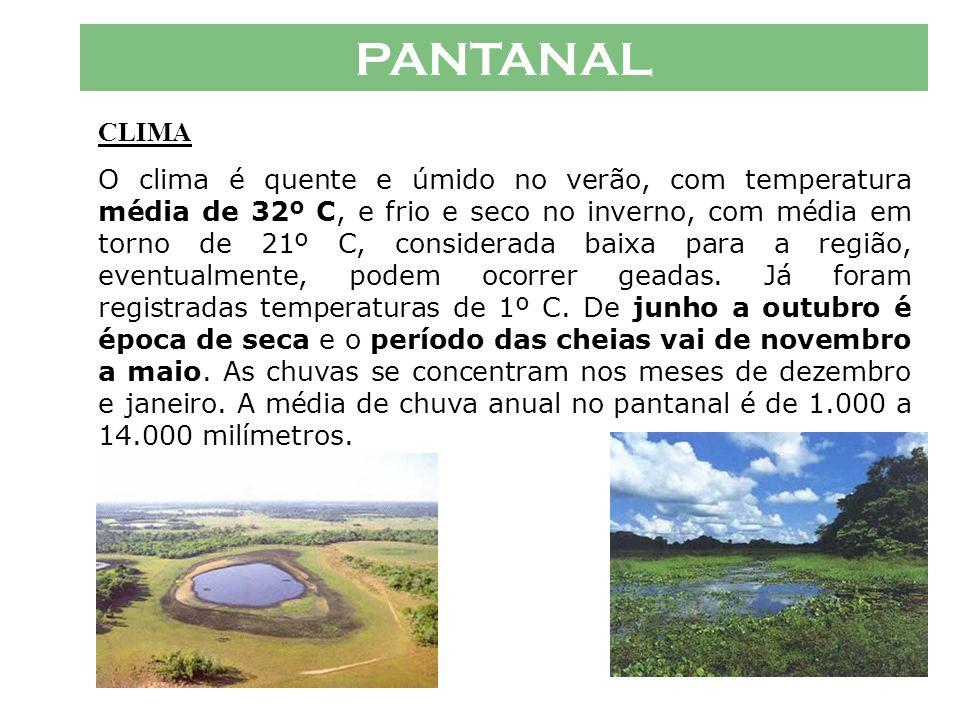 EXERCÍCIOS (008) O Pantanal se caracteriza, comparado aos demais biomas brasileiros, como aquele de mais alta taxa de endemismo de mamíferos E – a Floresta Amazônica é bioma brasileiro com maior endemismo de mamíferos.